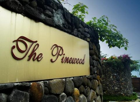 Pinewood Puncak